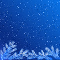 Frozen tree branches christmas winter background with at night Royalty Free Stock Image