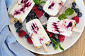 Frozen yogurt popsicles with oats and jam blueberry Stock Image