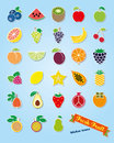 Fruit Assortment Sticker Icon Vector Set