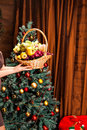 Fruit basket on the background of Christmas tree Royalty Free Stock Photo