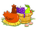 Fruit basket and hen Royalty Free Stock Image