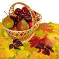 Fruit basket on leaves Stock Photo