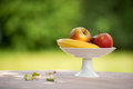 Fruit bowl outside standing in garden Stock Photography