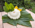 The fruit bush pattypan lying on a green leaf on a wooden table with leaves and flower Royalty Free Stock Images
