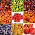 Fruit collage Stock Images