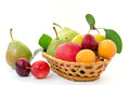 Fruit composition - wicker wooden basket with whole ripe fruits - pears, plums, apricots and apples on a white background Royalty Free Stock Photo