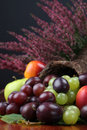 Fruit cornucopia Royalty Free Stock Images