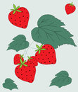 Fruit de fraise et illustration de lames Photos stock