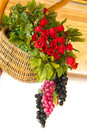 Fruit and flower basket for decoration Royalty Free Stock Image