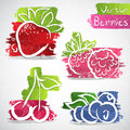 Fruit icons vector illustration of colorful icon collection Stock Photo