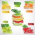 Fruit icons vector illustration of colorful icon collection Royalty Free Stock Photo