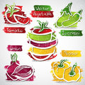 Fruit icons vector illustration of colorful icon collection Stock Photography