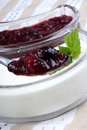 Fruit jelly with natural yoghurt and mint Stock Image
