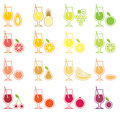 Fruit Juice Icon Set Stock Image
