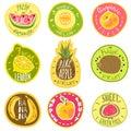 Fruit labels. Juice fresh organic fruit natural vegan food farm emblem logo print sticker text cartoon vector templates