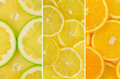 Fruit mix of sweetie fruit lemon and orange texture close up Royalty Free Stock Photos