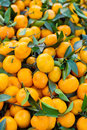 Fruit orange closeup Royalty Free Stock Photo