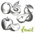 Fruit peach, apple, pear set hand drawn vector illustration sketch Royalty Free Stock Photo