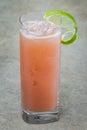 Fruit punch Royalty Free Stock Photo