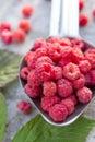 Fruit raspberries in the metallic spoon