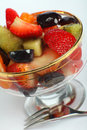 Fruit salad angled Royalty Free Stock Photography
