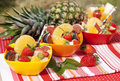 Fruit salad in colored bowls Royalty Free Stock Photo