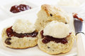 Fruit Scones with Jam and Cream Stock Photos