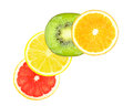 Fruit slices slice of orange grapefruit lemon and kiwi on a white background Royalty Free Stock Image