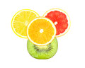 Fruit slices slice of orange grapefruit lemon and kiwi on a white background Stock Images