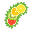 Fruit slices slice of orange grapefruit lemon and kiwi on a white background Royalty Free Stock Photos