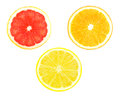 Fruit slices slice of orange grapefruit and lemon on white background Stock Photos