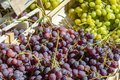 Grapes on the market Royalty Free Stock Photo