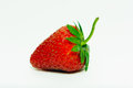 Fruit strawberry red bright palatable on white background Royalty Free Stock Images
