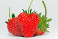 Fruit strawberry red bright palatable on white background Stock Photography