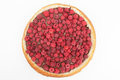 Fruit tart covered in raspberries Stock Photography