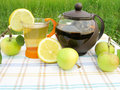 Fruit tea with apple and lemon Stock Photography
