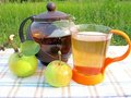 Fruit tea with apples tea-drinking outdoors Stock Images