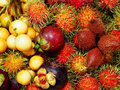 Fruit in thailand a is a part of a flowering plant that derives from specific tissues of the flower one or more ovaries and some Royalty Free Stock Image