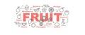 Fruit vector banner