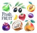 Fruit vector logo design template. food or harvest