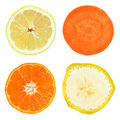 Fruit and vegetable slices Stock Image