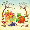 Fruit and vegetables in Autumn. Royalty Free Stock Photo