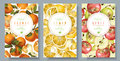 Fruit vertical banners Royalty Free Stock Photo
