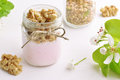 Fruit yogurt with granola Royalty Free Stock Photo