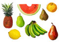 Fruits assorts (watercolor) Royalty Free Stock Photos