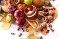 Fruits of autumn Royalty Free Stock Photo