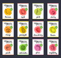 Fruits and berries labels. Hand drawn healthy, organic food and drink cards set. Farm eco products tags collection.