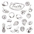 Fruits and berries sketches of icons vector set Royalty Free Stock Image