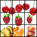 Fruits collage Stock Photography