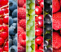 Fruits collage Stock Photos